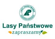 lasy_panstwowe_zapraszamy