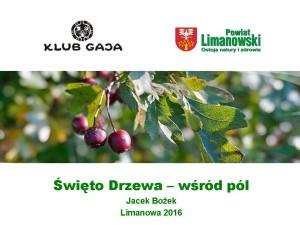 Jacek_Bozek_Swieto_Drzewa_wsrod_pol