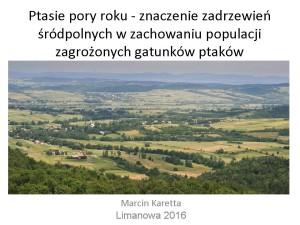 Zadrzewienia Marcin Karetta(1)